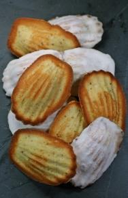 Shell Bread, 1617